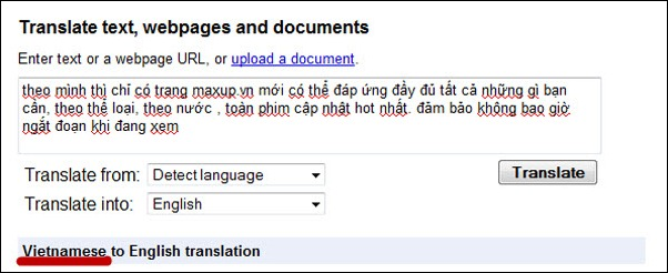 Google translate Vietnamese to English